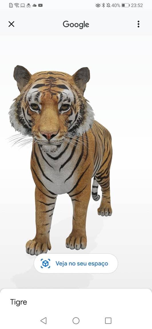 Tigre 3D no Google