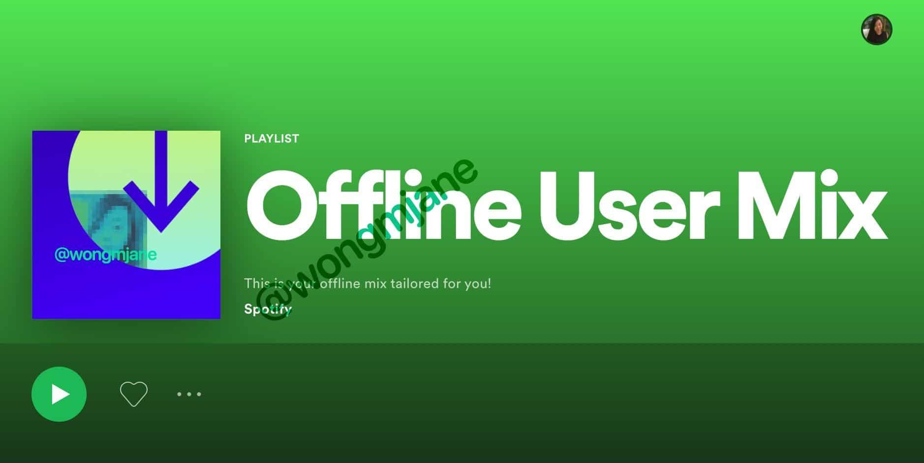 Spotify playlist offline