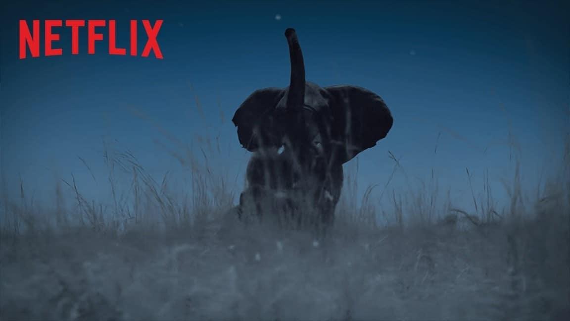 Netflix dormir